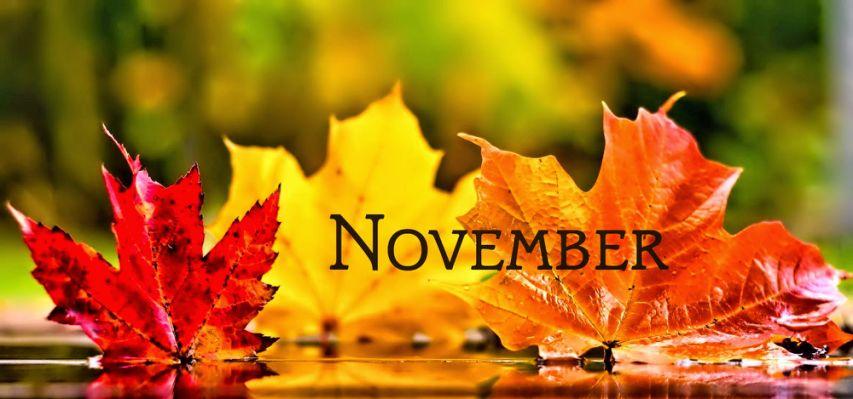 November Newsletter 2018